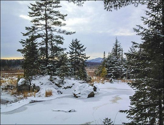 Adirondack Wetlands: Heron Marsh from the Barnum Brook Trail