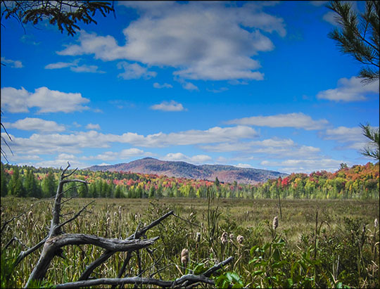 Adirondack Wetlands: Heron Marsh and Saint Regis Mountain (27 September 2012)