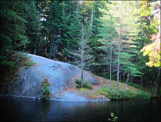 Adirondack Habitats: Black Pond from the  Black Pond Trail (20 July 2012)