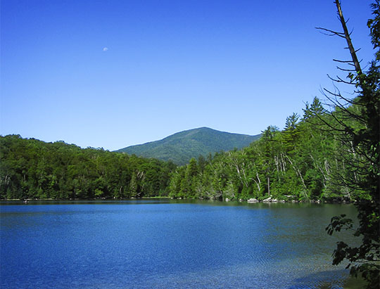 Adirondack Mountains: Street Mountain from the Heart Lake Trail (2 July 2010)