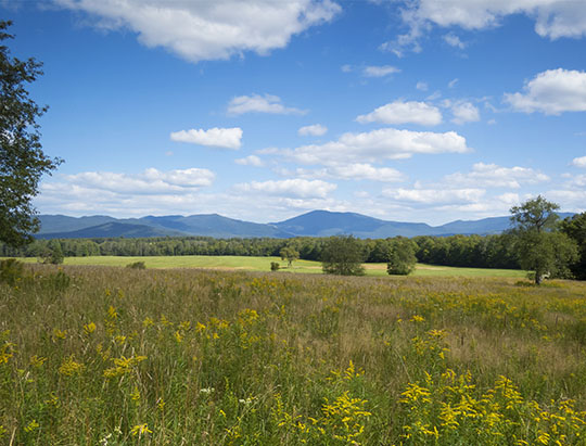 Adirondack Mountains: High Peaks from the Sugar Maple Trail at Heaven Hill (27 August 2017)