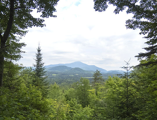 View from the Henry's Woods Plateau Trail - Wilmington Notch Overlook (6 July 2017)