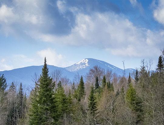 Algonquin Peak from the John Brown Farm State  Historic Site (18 April 2017)