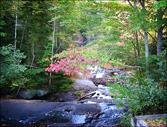 Shingle Mill Falls from the Logger's Loop Trail (17 September 2004)