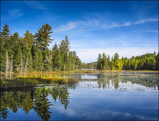 Adirondack Wetlands: Heron Marsh from Shingle Mill Falls (17 September 2004)