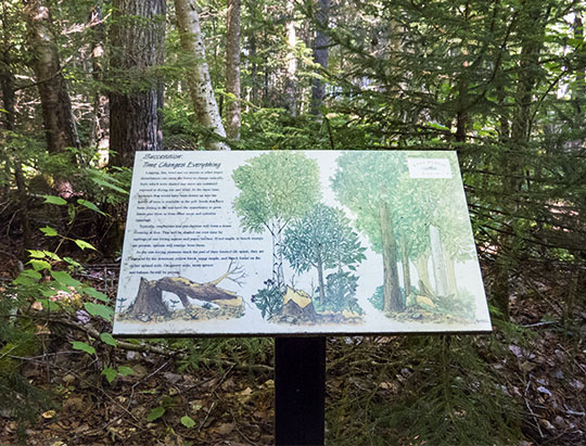 Interpretive Trail Sign on the Peninsula Nature Trails (28 July 2015)